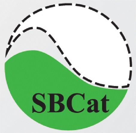 SBCat - Pesquisa Google - Google Chrome