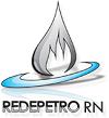 redepetro-logo (1)100